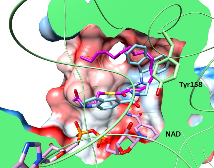 GEQ and THT in InhA binding site